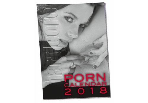 Porn Pin-Up Calendar (hardcore)