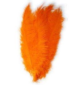 Spadonis veren oranje (Piet veren)± 50cm