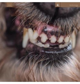 Sacred Bones Records Blanck Mass - World Eater