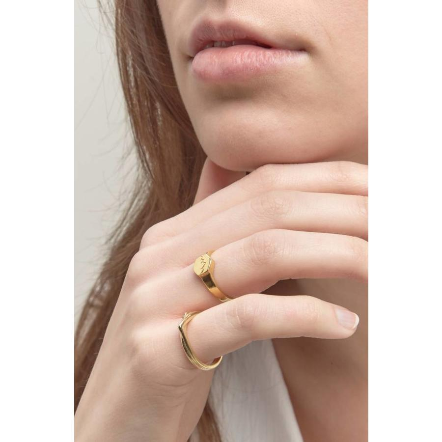 Scenic Signet Ring Gold-2
