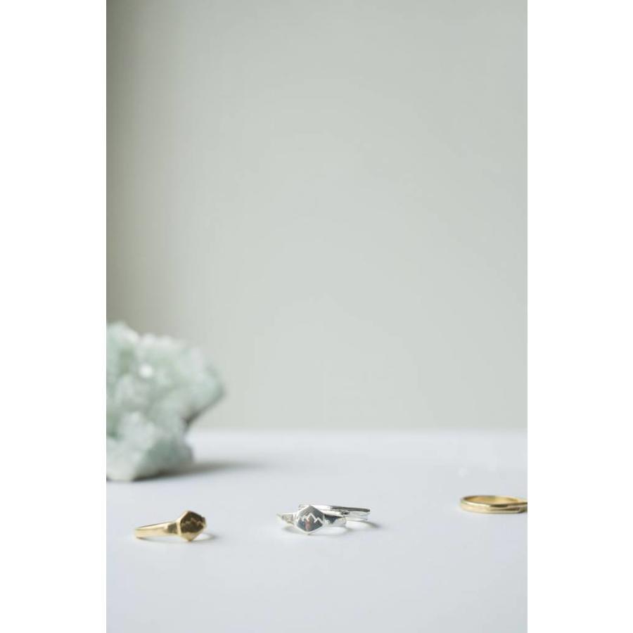 Scenic Signet Ring Goud-3