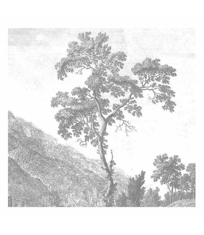 Fotobehang Engraved Landscapes, 292.2 x 280 cm