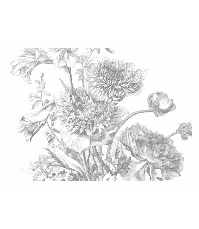 Wall Mural Engraved Flowers, 389.6 x 280 cm