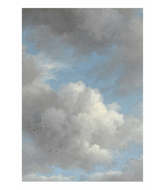 Wall Mural Golden Age Clouds, 194.8 x 280 cm