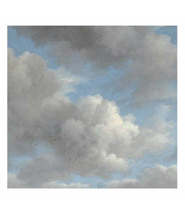 Wall Mural Golden Age Clouds, 292.2 x 280 cm