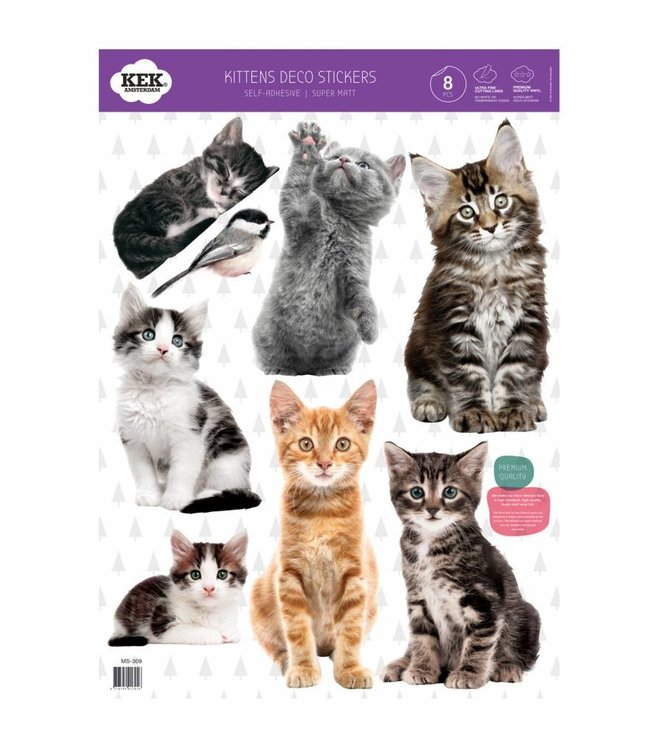 Set wall stickers Kittens, 42 x 59 cm