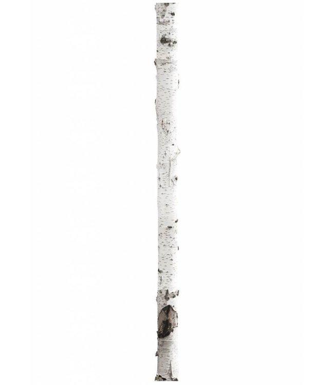 Wall sticker Home Tree 3, 16 x 260 cm
