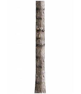 Muursticker Home Tree 6