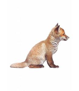 Wandtattoo Fox Cub