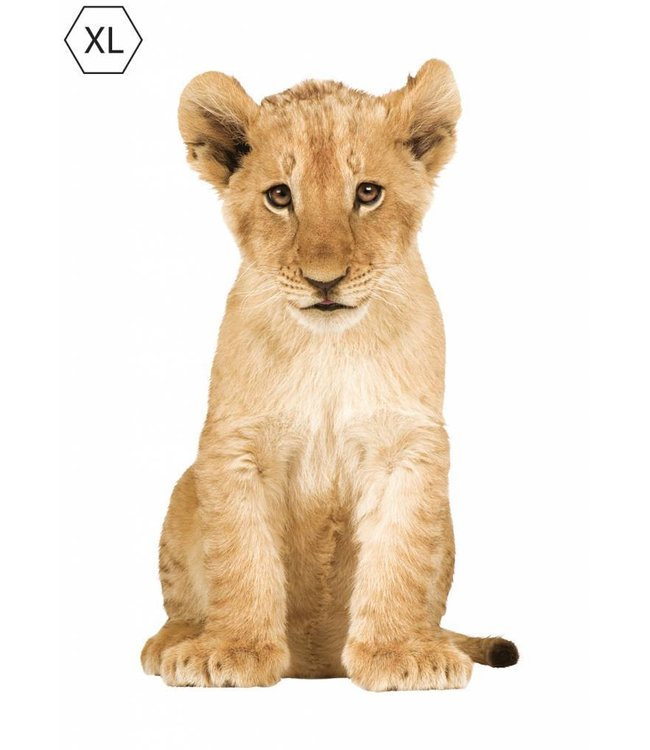 Wall sticker Lion Cub XL, 70 x 115 cm