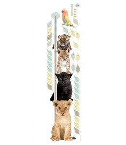 Muursticker Growth Chart 1