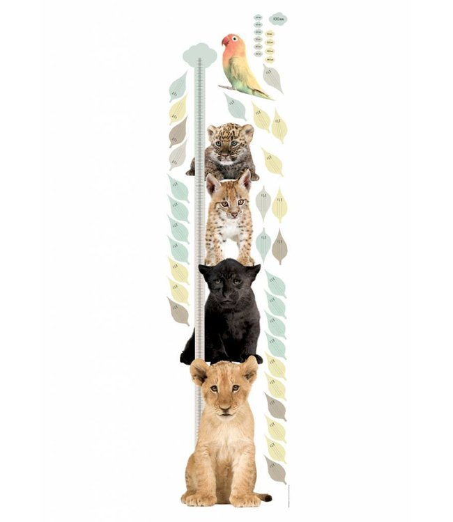 Wandtattoo Growth Chart 1, 40 x 150 cm