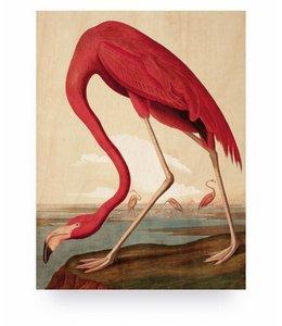 Prints auf Holz, Flamingo, S