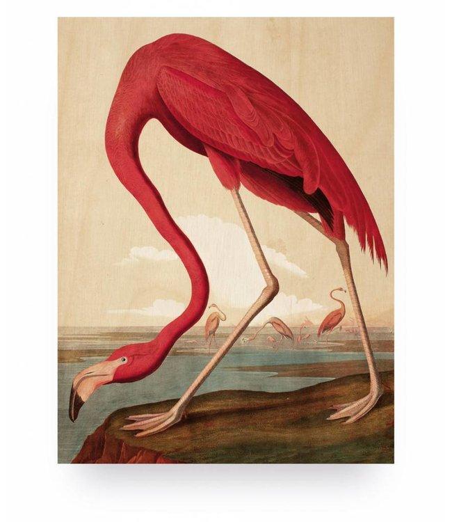 Wood print, Flamingo, S, 45 x 60 cm