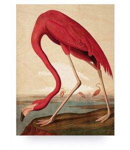 Prints auf Holz, Flamingo, L