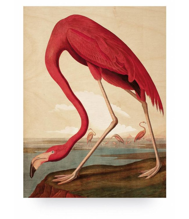 Wood print, Flamingo, L, 75 x 100 cm