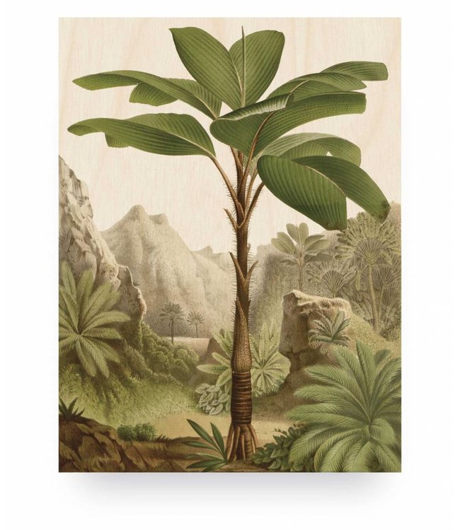 Wood print, Banana Tree, S, 45 x 60 cm