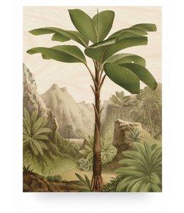 Prints auf Holz, Banana Tree, L
