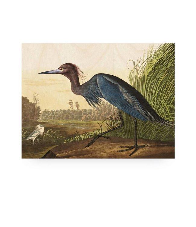 Prints auf Holz, Blue Crane, M, 80 x 60 cm