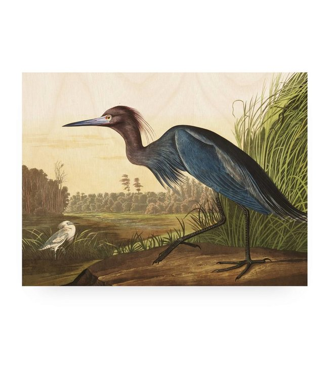 Print op hout, Blue Crane, L, 100 x 75 cm