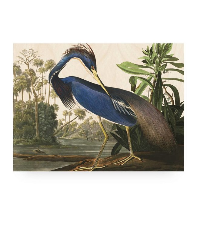 Wood print, Louisiana Heron, L, 100 x 75 cm