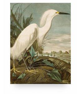 Print op hout Snowy Heron, M