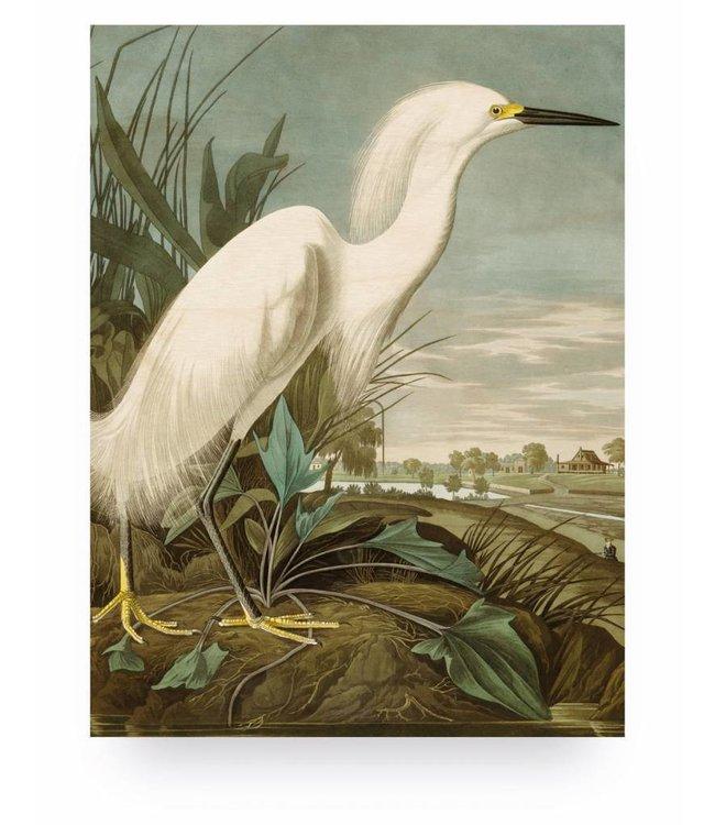 Wood print, Snowy Heron, M, 60 x 80 cm