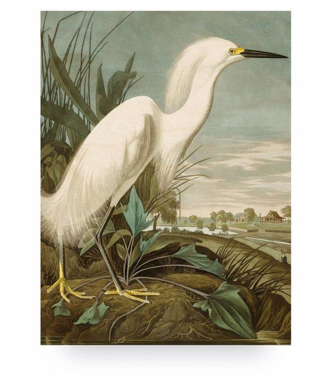 Print op hout, Snowy Heron, L, 75 x 100 cm