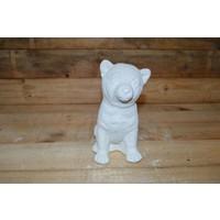 thumb-Jonge hond-1