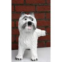 thumb-Hond ( Terriër)-2
