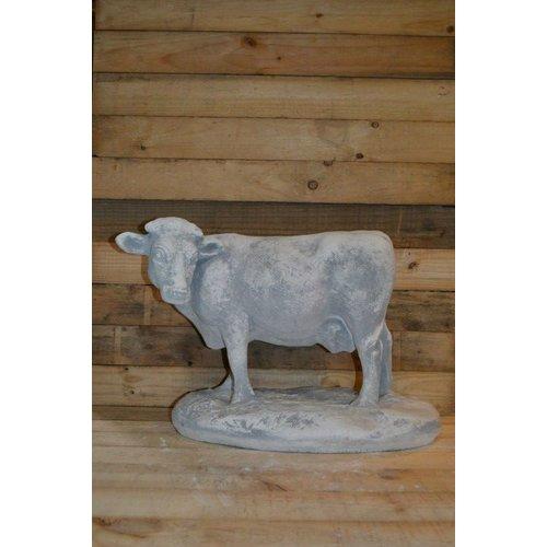 Koe ( H 43 cm)