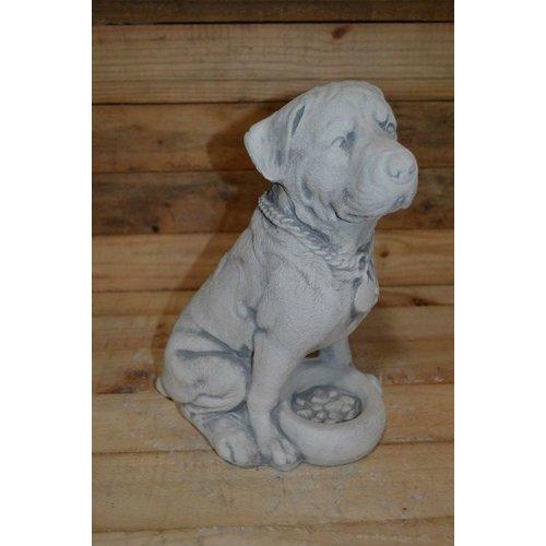 hond met voerbakje ( H 37 cm)