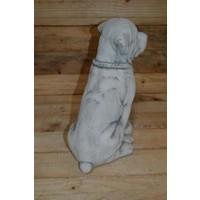 thumb-Rottweiler met voerbakje-3