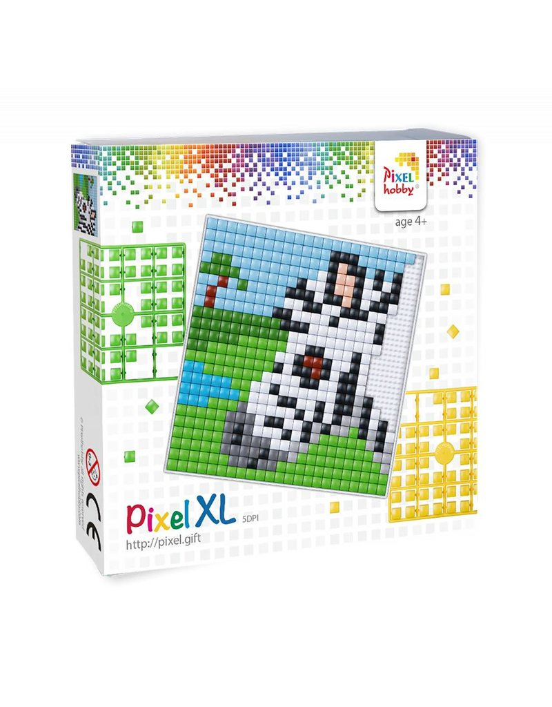Pixel Hobby Pixel XL set  zebra