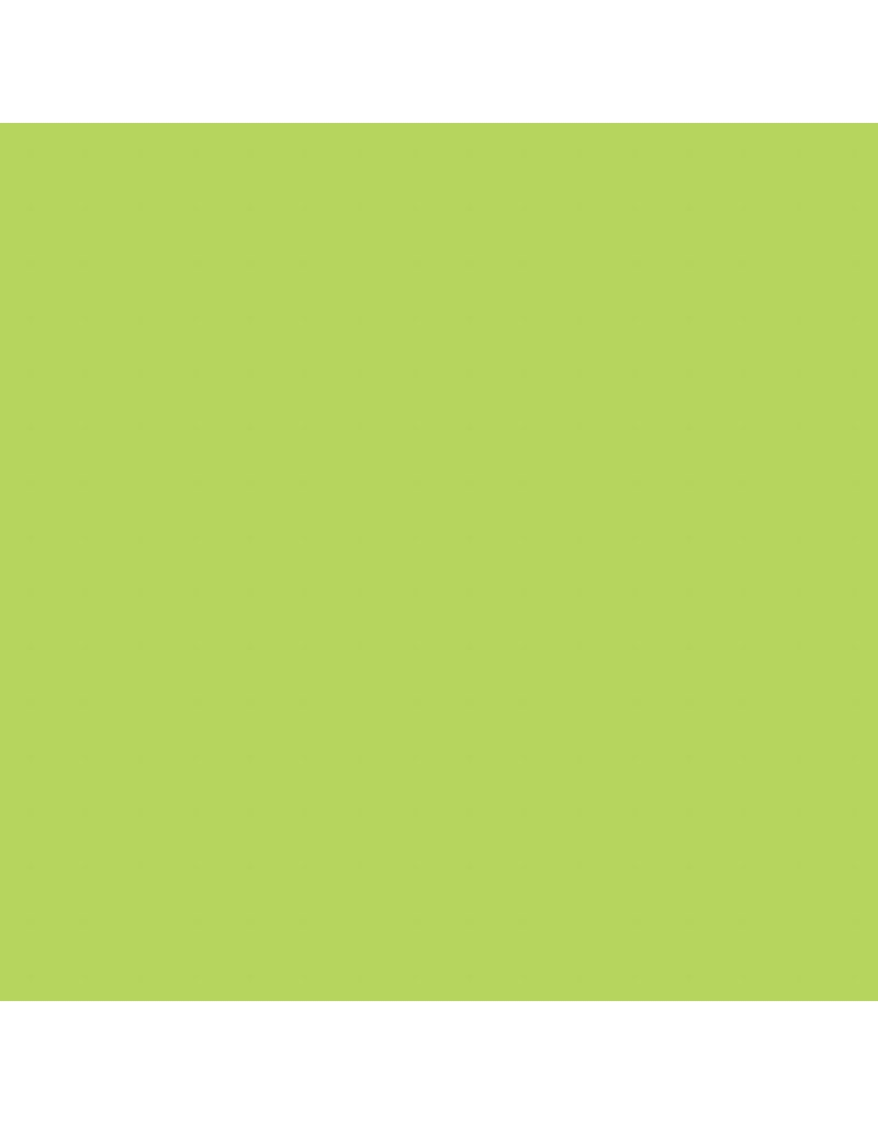 EVA Foam Vellen, A4 21x30 cm, dikte 2 mm, 10 vellen, lichtgroen