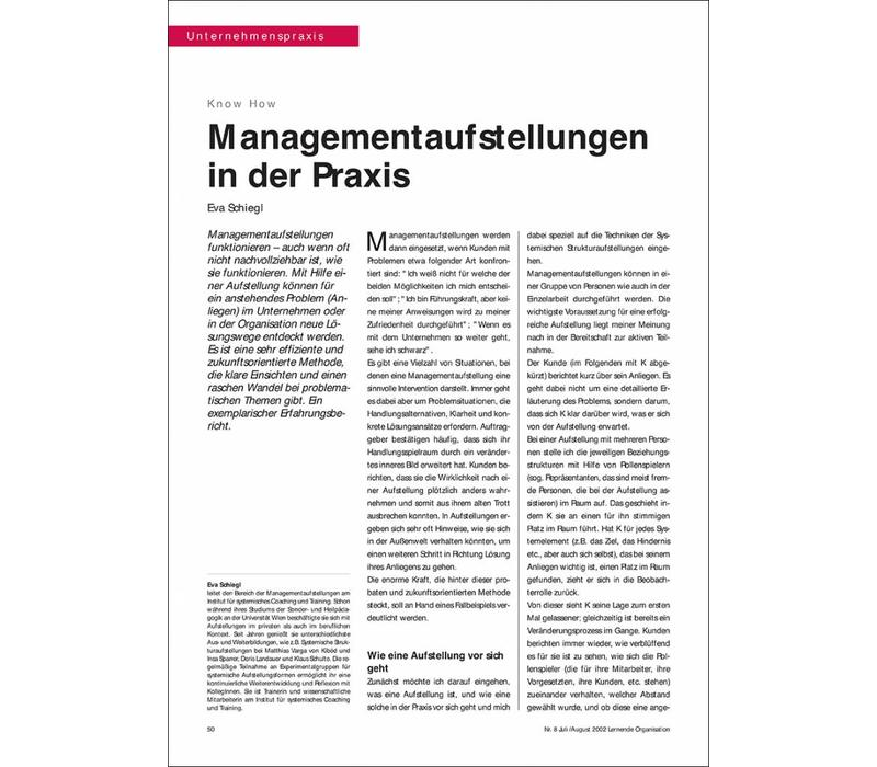 Managementaufstellungen in der Praxis