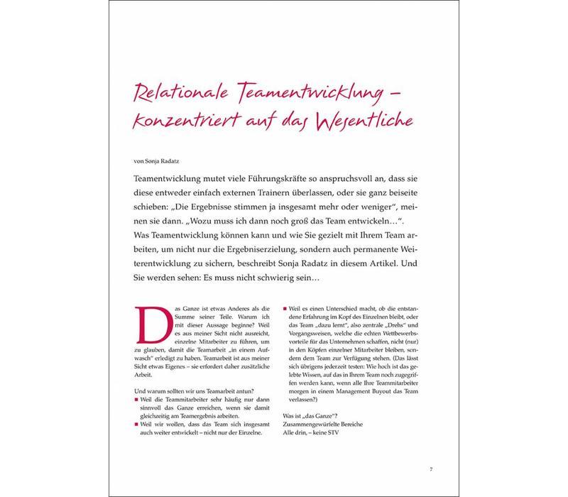 Relationale Teamentwicklung – konzentriert auf das Wesentliche