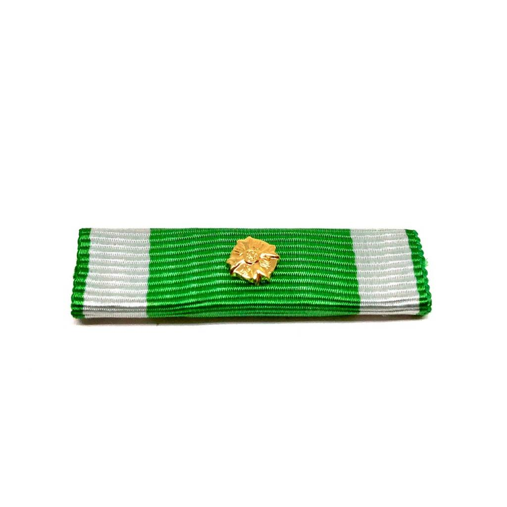 Burgerlijke medaille brandweer eerste klasse