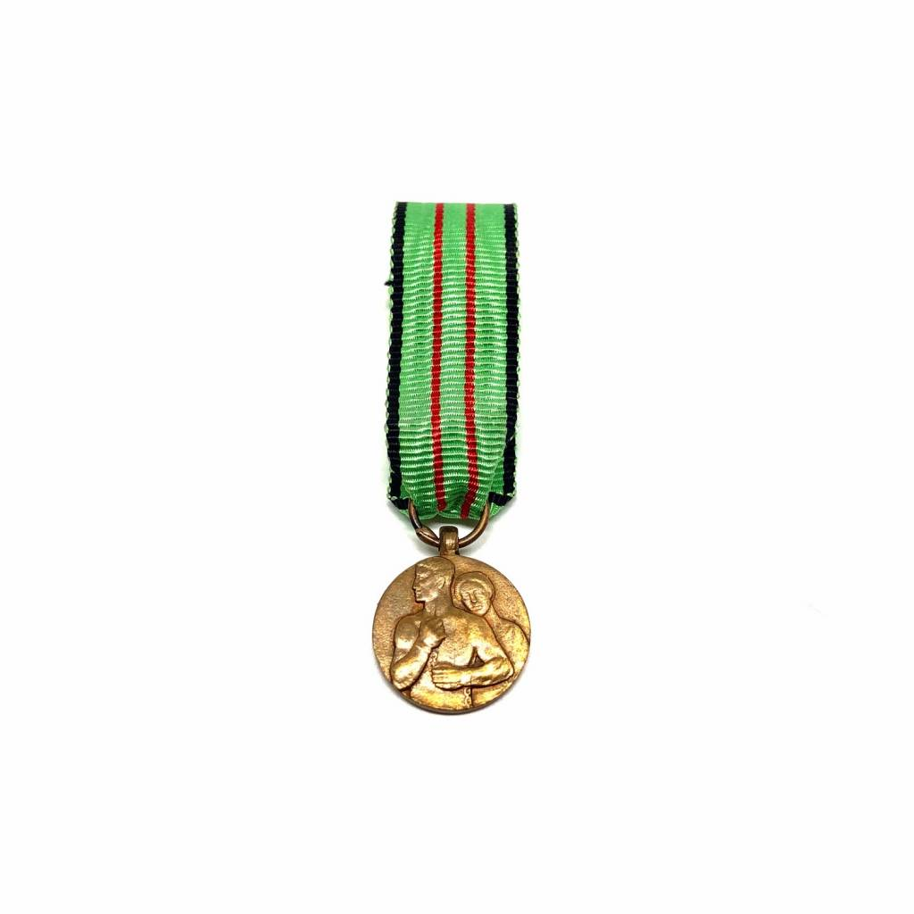 Medal for Civil Resistance