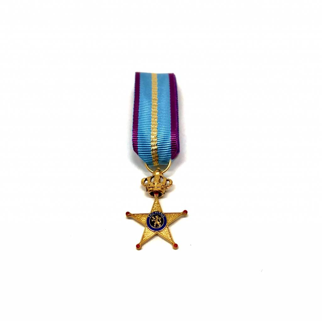 Erekruis voor Militaire Dienst in het Buitenland eerste klasse