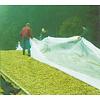 NUWO Onderlegfolie 50 x 12 meter