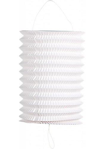 Lampionnen wit - 6 stuks