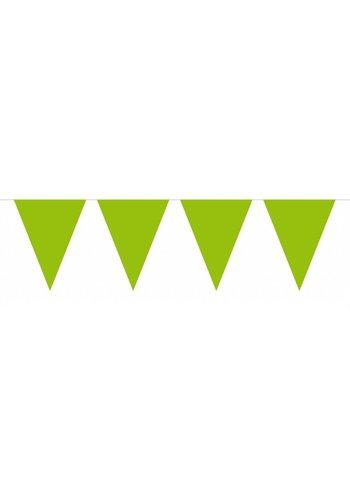 Vlaggenlijn Lime Groen - 10 meter