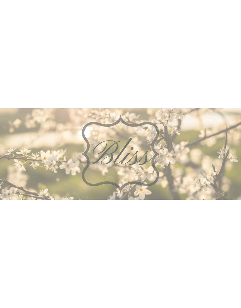 Bliss Intuitief - 's Gravendeel