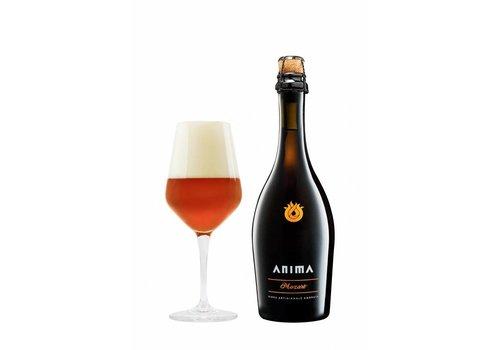Anima Mozart birra 7,0%  50cl 6fl.