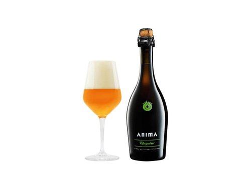 Anima Cleopatra birra 5,2% 75cl 6fl.