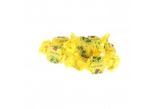 Gardiners vanille fudge bulk 3kg