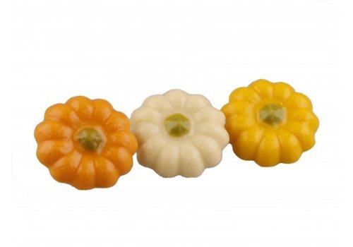 Pompoenen wit geel oranje 12g 2,5kg