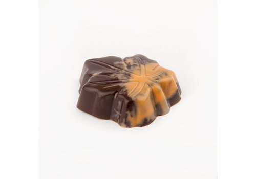 Canadees blad deco puur praline oranje 15,5g 1,45kg