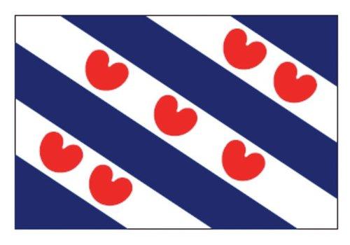 Talamex Talamex vlaggen Nederland: Provincievlag Friesland 100x150
